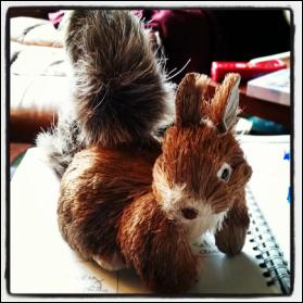 Money Monday:  Work, Work…Squirrel